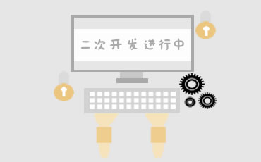 关于对程序二次开发的一些引导和建议