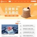 通用响应式企业网站模板