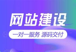 网站功能定制 迅睿插件开发 迅睿二次开发